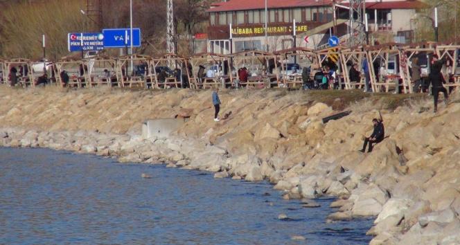 Van Gölü sahillerinde normalleşme yoğunluğu